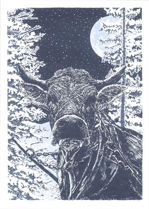 Zwitserse koe